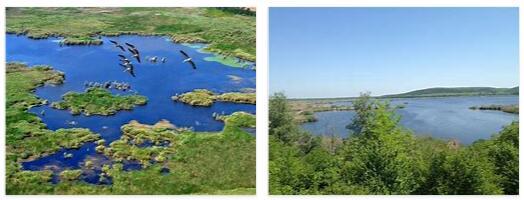 Srebarna Biosphere Reserve (World Heritage)